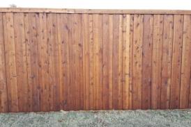 8' Board on Board Cedar(1)
