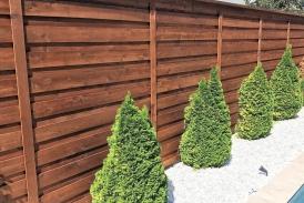 Horizontal Board on Board Fence